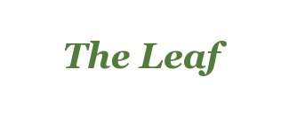 The Leaf Volume 3 Issue 4